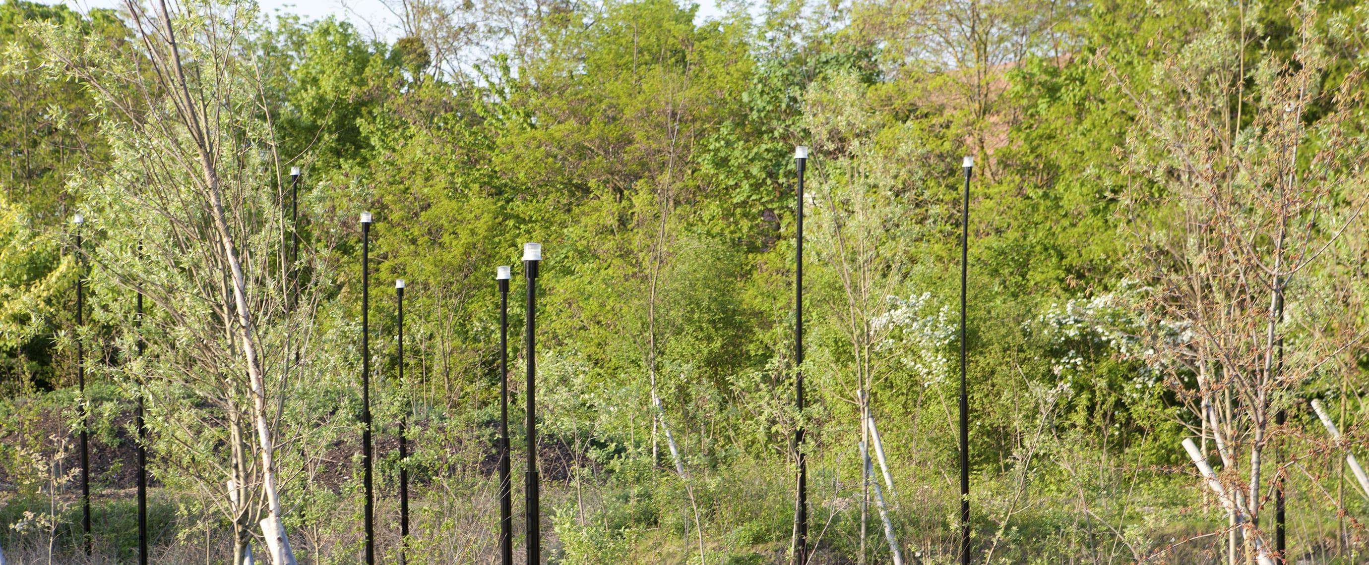 Balise LED décorative sur mât avec plot solaire led ECO-MAR Eco-Innov